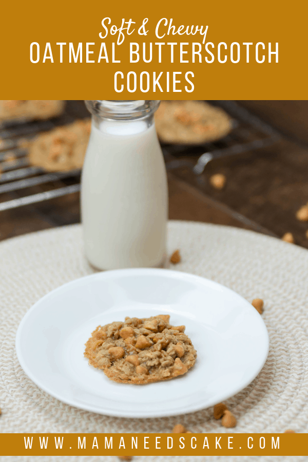 Soft Chewy Oatmeal Butterscotch Cookies
