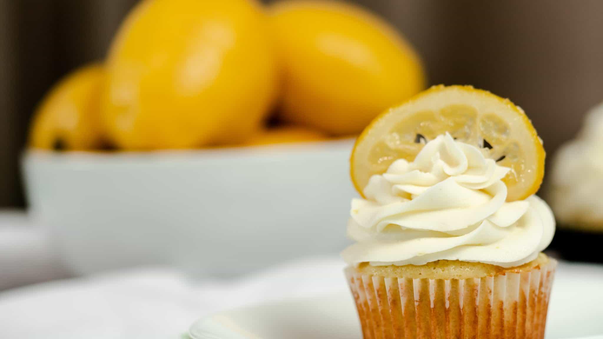 Lemon Vanilla Cupcake with a candied lemon on top.