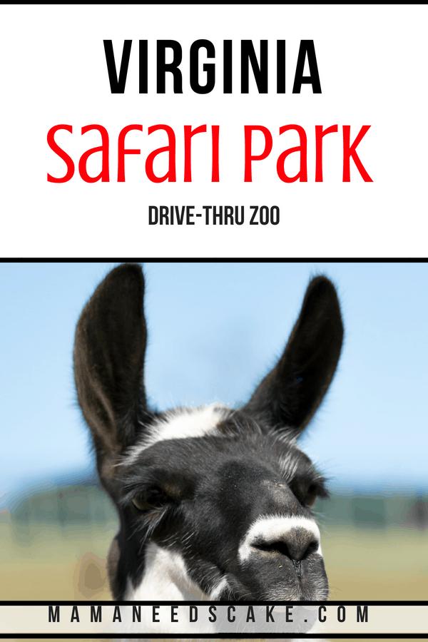 Virginia Safari Park 1