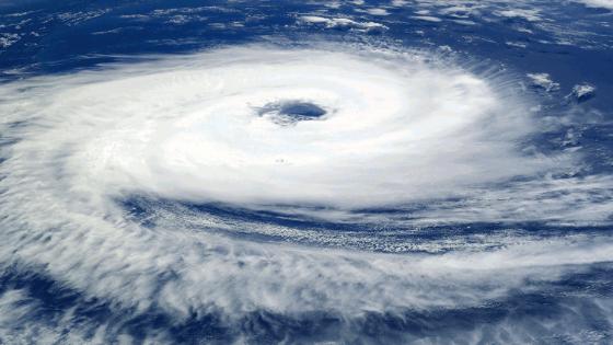 hurricane preparedness tips and hacks