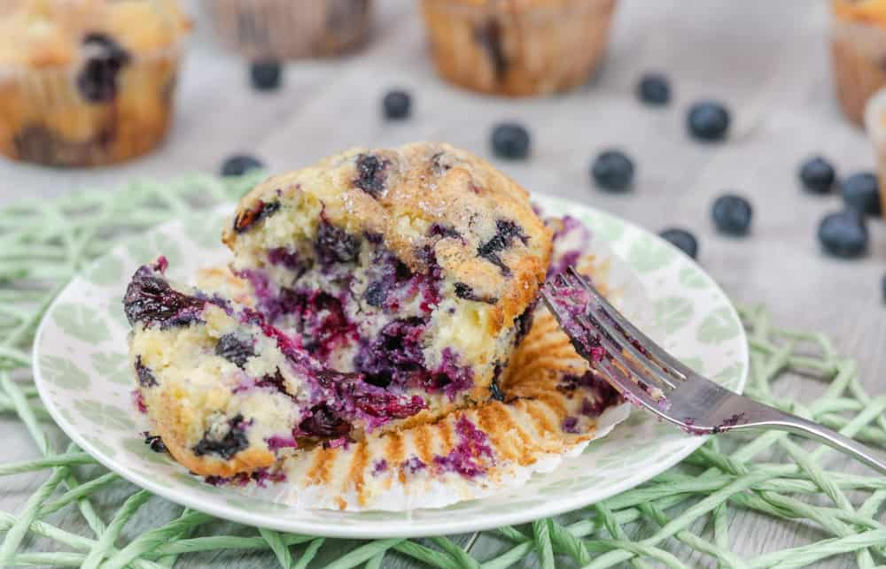 A jumbo blueberry muffin cut open with a fork with blueberries on it.