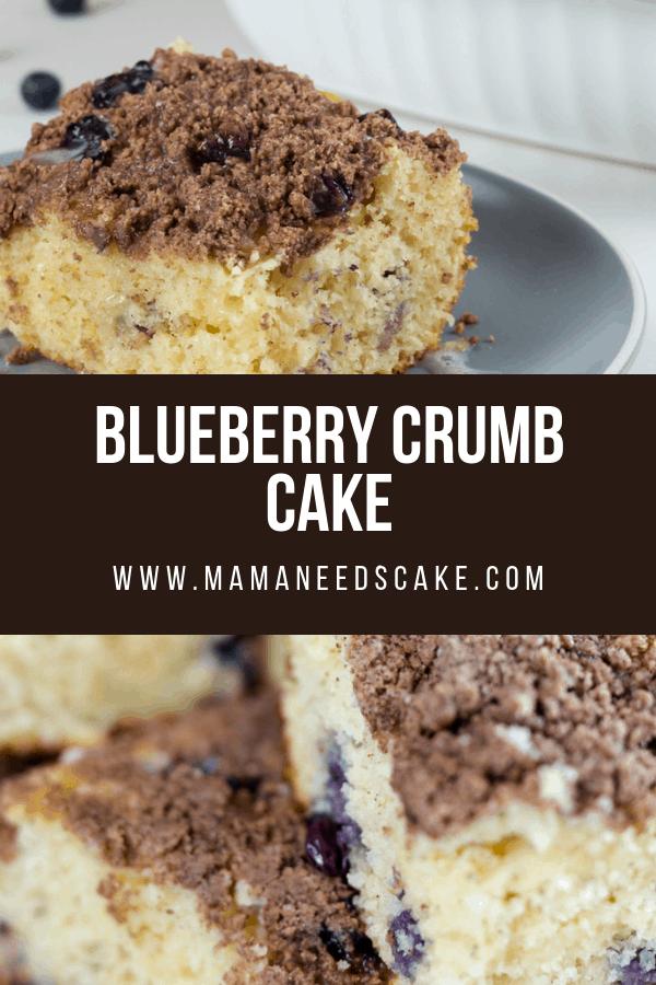 Blueberry Crumb Cake 1