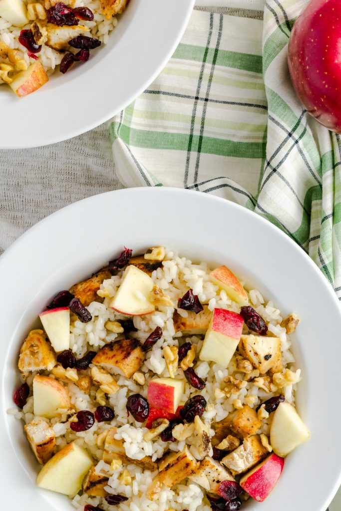 Rimmed bowl of rice, cut apples, dried cranberries, and chicken.