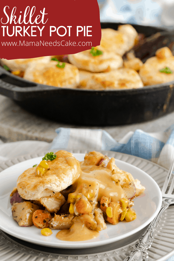 TURKEY POT PIE 2
