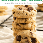 brown butter chocolate chip cookie pin