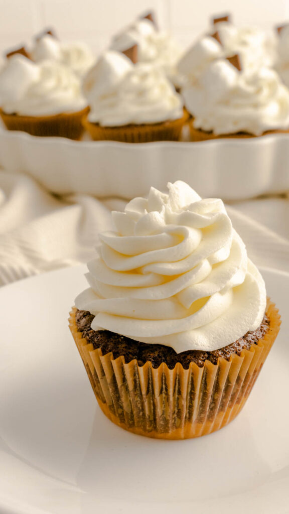 Chocolate cupcake with a graham cracker crust frosted with marshmallow buttercream.